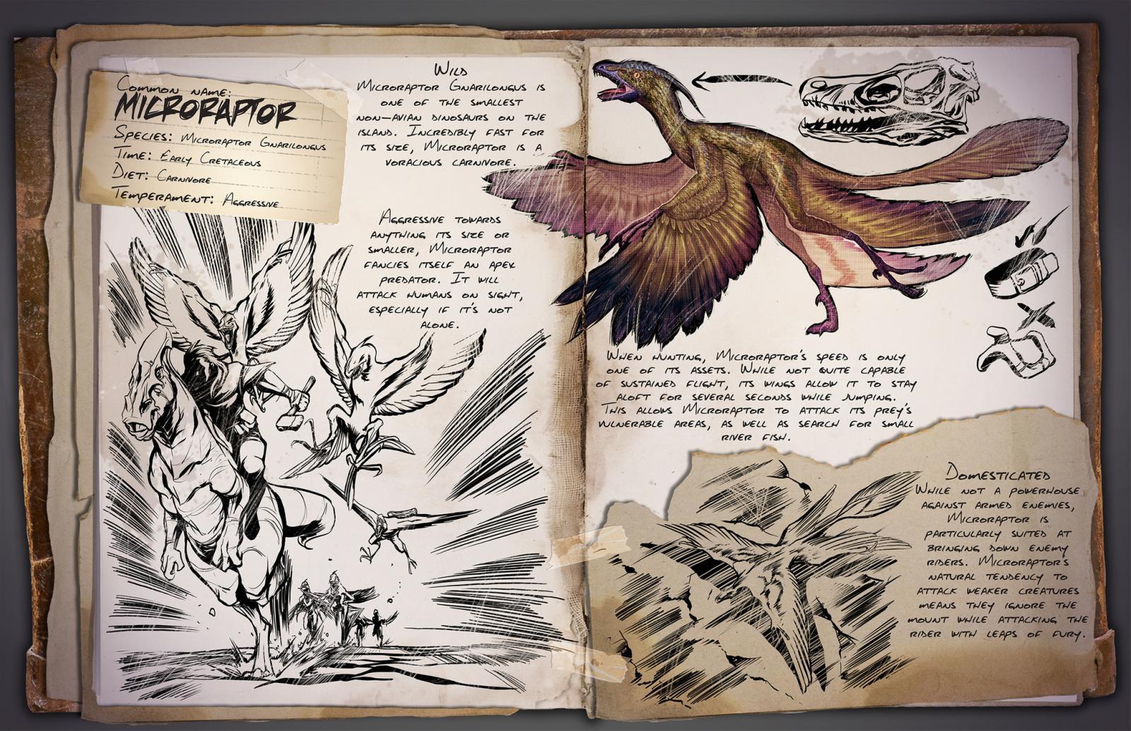 large.Microraptor.jpg