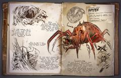 Araneomorphus