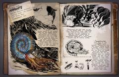 Dossier: Ammonite