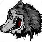 Greyhound2564