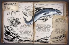 Dossier: Basilosaurus