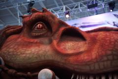 PAX Rex