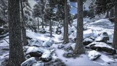 Snow Biome Update