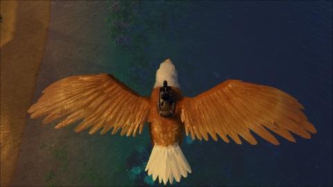 bald eagle community