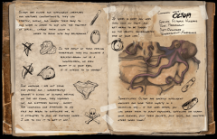 OctopusVulgaris(Octopi)