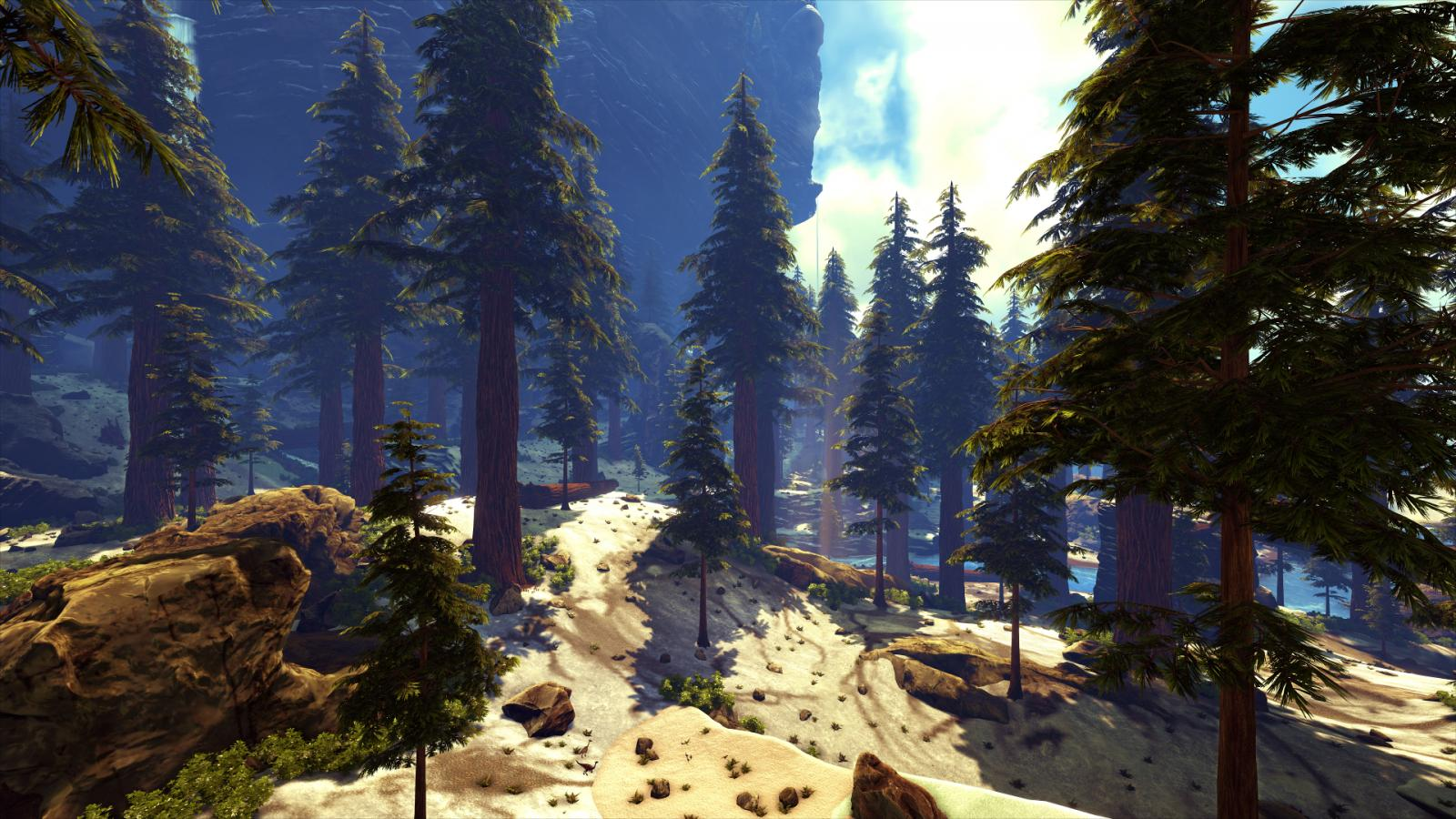 large.5882e6e8f3738_EXFIB0-WinterInTheRedwood-SuperResolutionsta.jpg