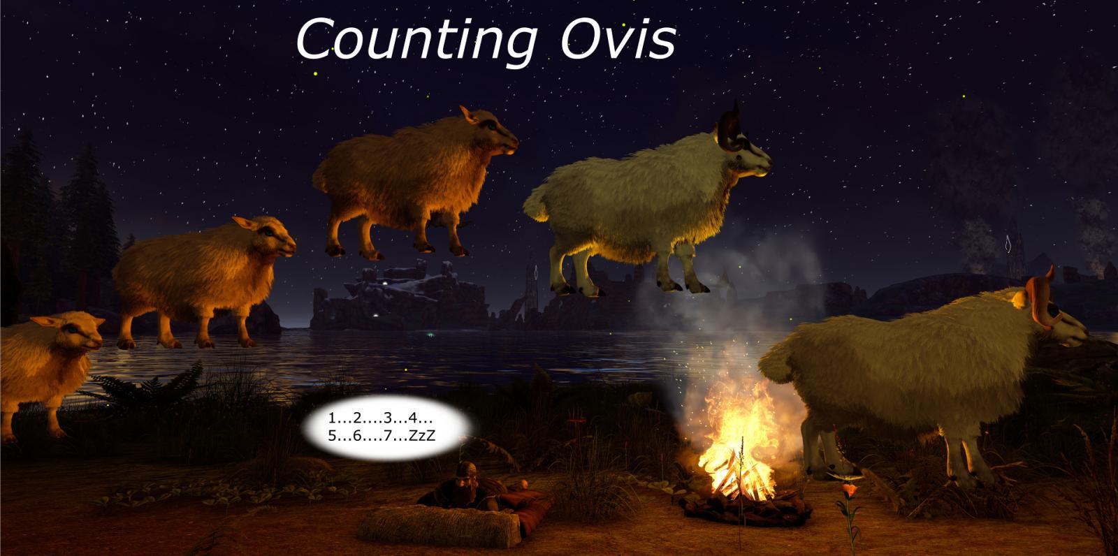 large.589e963935cb3_WolfAngelus-CountingOvis-sta.jpg