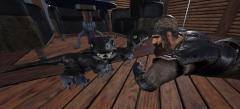 The adventures of Colony 1