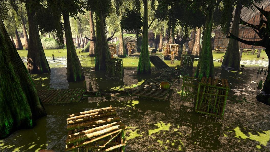 aSwamp Walk3.jpg