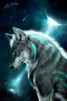 Wolf Dragon Clan
