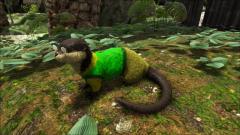 Mr. Otterton Otter