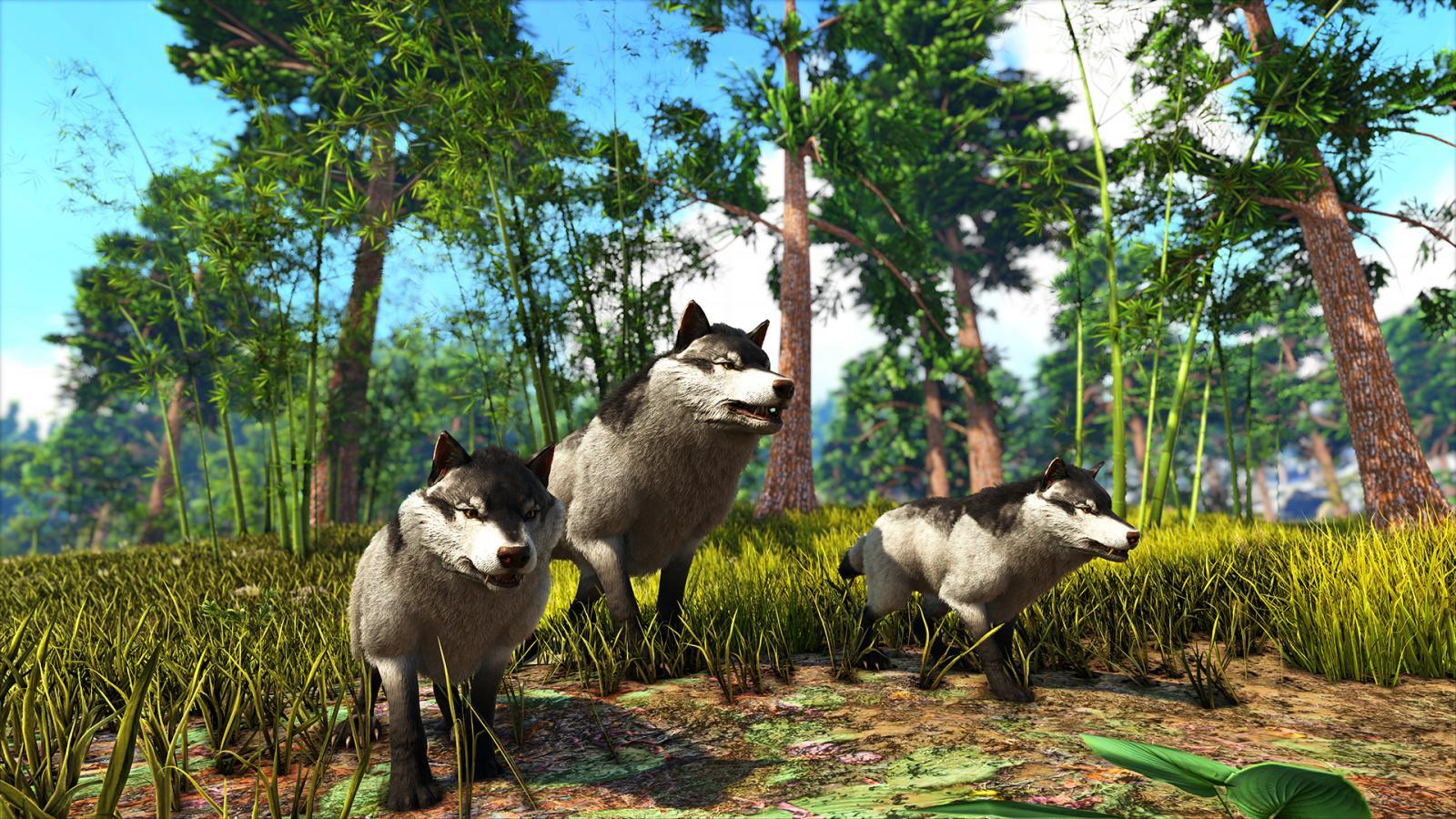 large.5a8b605fd856e_WolfAmaterasu-CuteDirewolves-8x.jpg