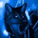 BlueFox91