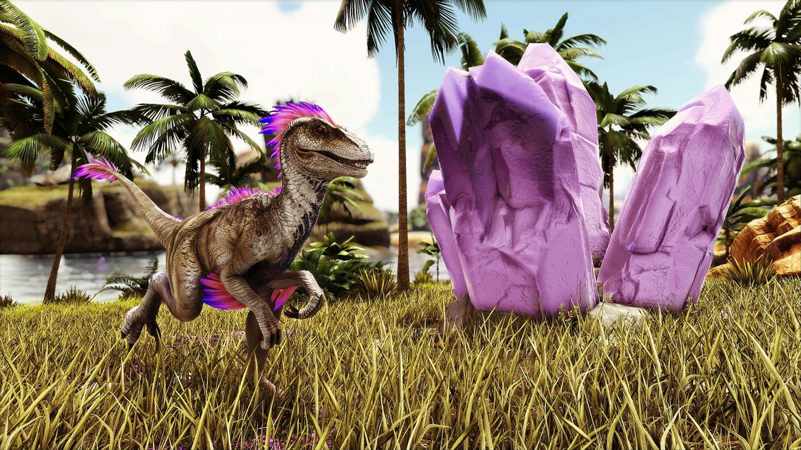 large.5a9d84ffdaf64_BlueDragon-Purple-SuperRes.jpg