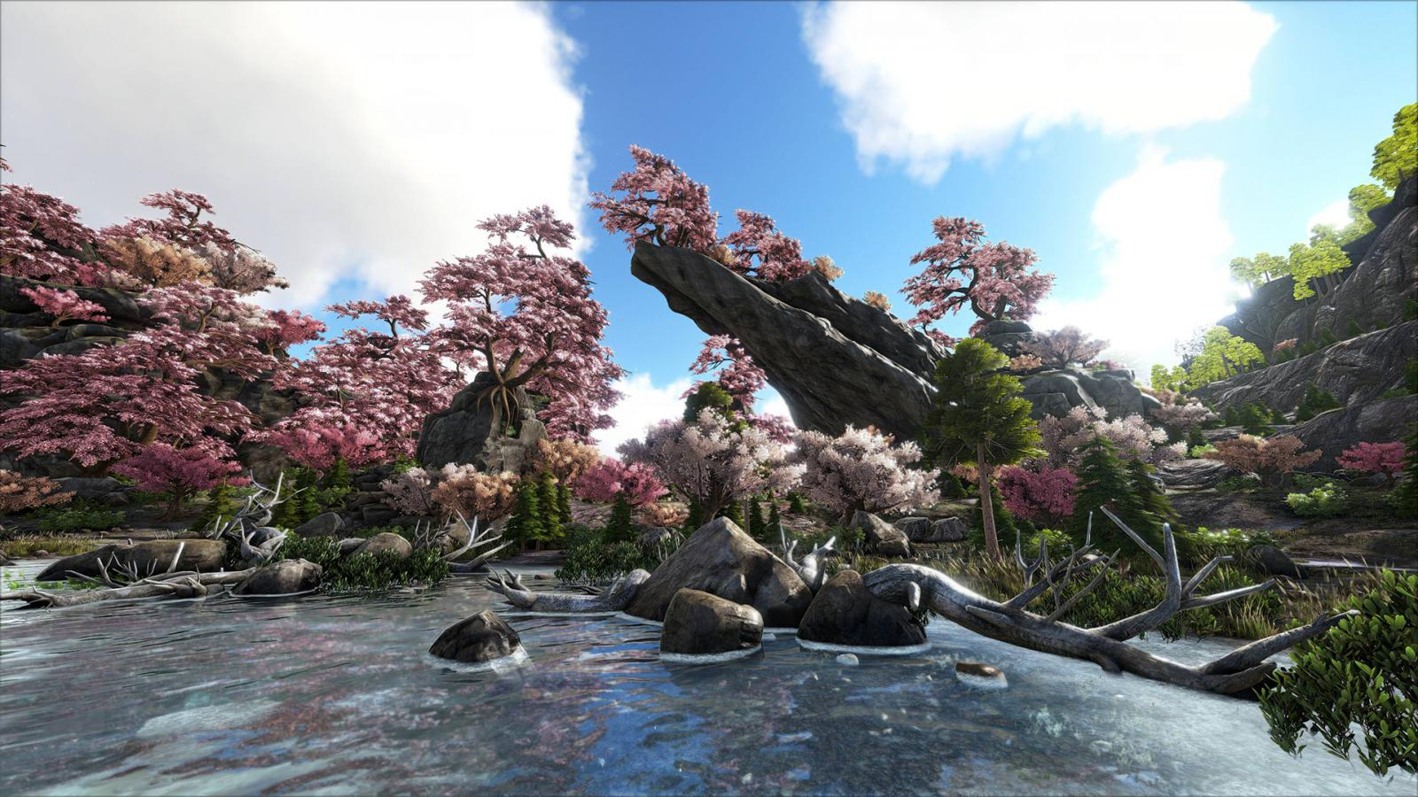large.5ab036c05d2e8_Rahthos-CherryBlossoms-SuperResolution.jpg