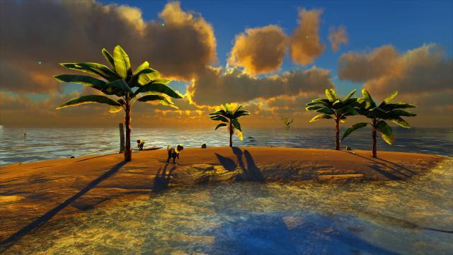 Wolf Amaterasu - Vacation - 8x.jpg