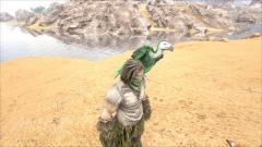 Ark.Vulture.jpg