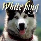 Whitefang85