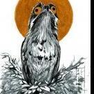 PocketOwl